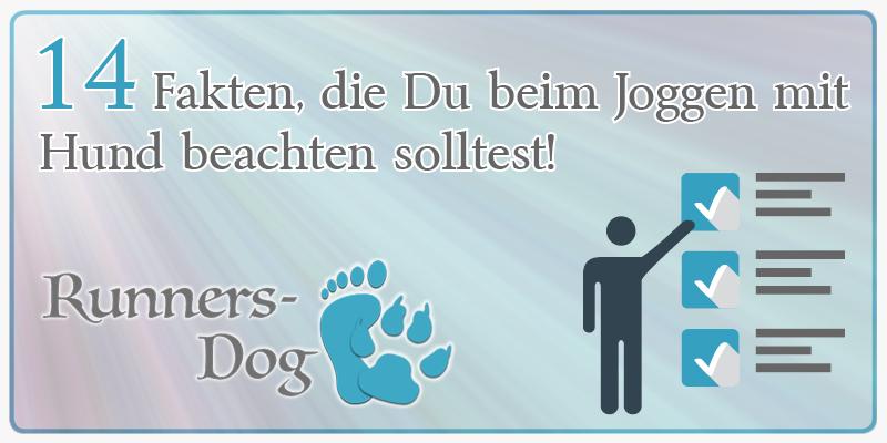 14 Fakten übers Joggen mit Hund