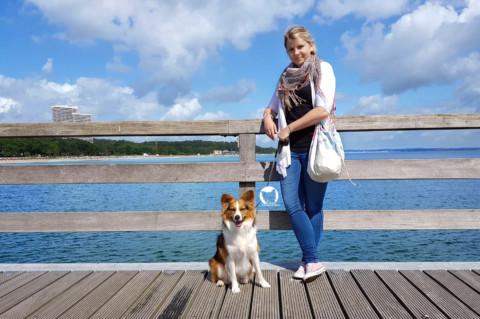 [miDoggy-Parade] Urlaub mit oder ohne Hund?