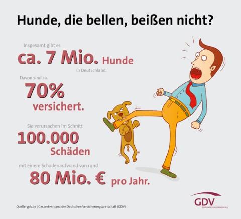 Hunde Versicherungen – Wusstet ihr, dass…..?