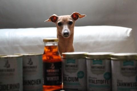 [Hundefutter] Hirtengold macht Lola glücklich