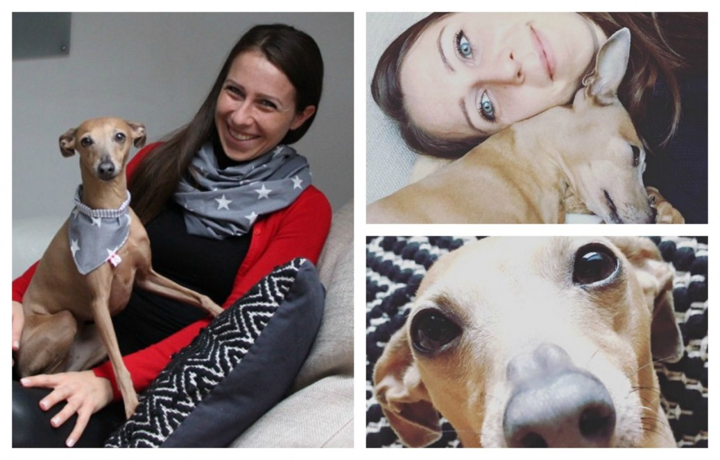 Titel_midoggy community Interview Hundeblog