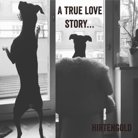 A true love story.