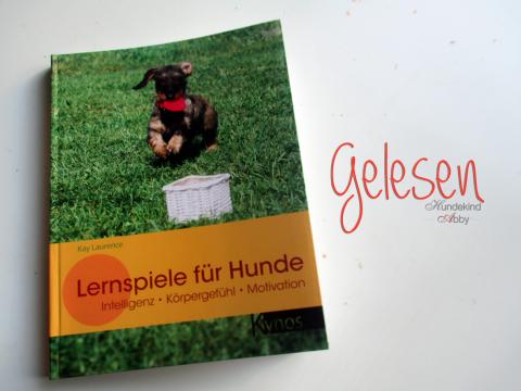 Werbung: Lernspiele für Hunde