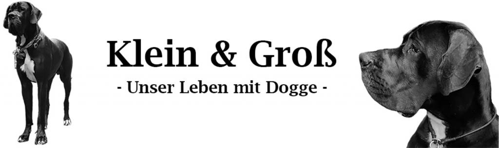 Hundeblog der Woche Klein & Groß Unser Leben mit Doggy
