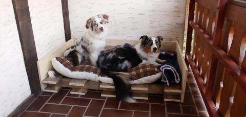 DIY Hundebett