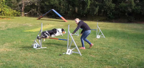 Agility Trainingstag [+Video]