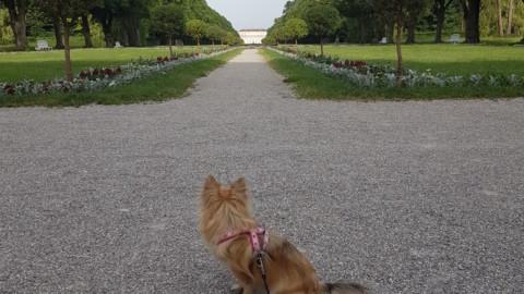 [Blogparade Leinenengel] Unser Lieblingsort – Schlossanlage Schleißheim
