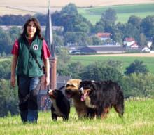 Wandern mit mehreren Hunden: Wie Franzi und ihr großes Trio am Berg zurecht kommen