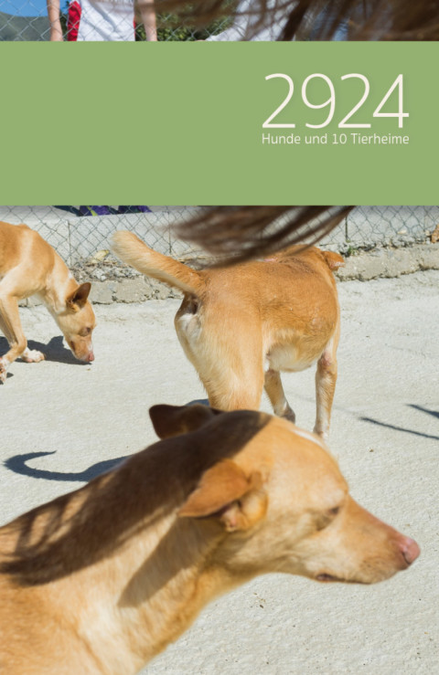 FotobuchRoman: 2924 Hunde marschieren in den Druck