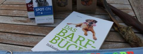 Bunte Knete im Kopf oder der 3. Hundetag Rhein-Sieg