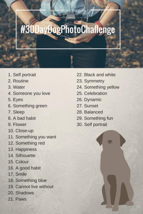 30 DAY DOG PHOTO CHALLENGE