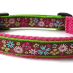 DIY für Hunde - Halsband Nähanleitung