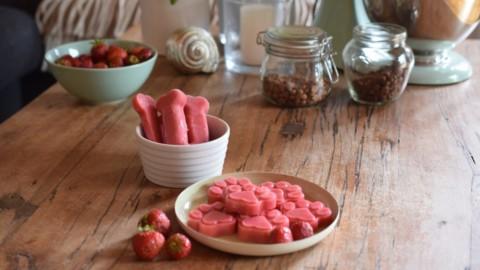 [Rezept mit Erdbeeren] Hunde-Eis