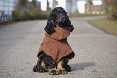 Produkttest/ Das Dryup Cape (Hundebademantel) von Actionfactory *