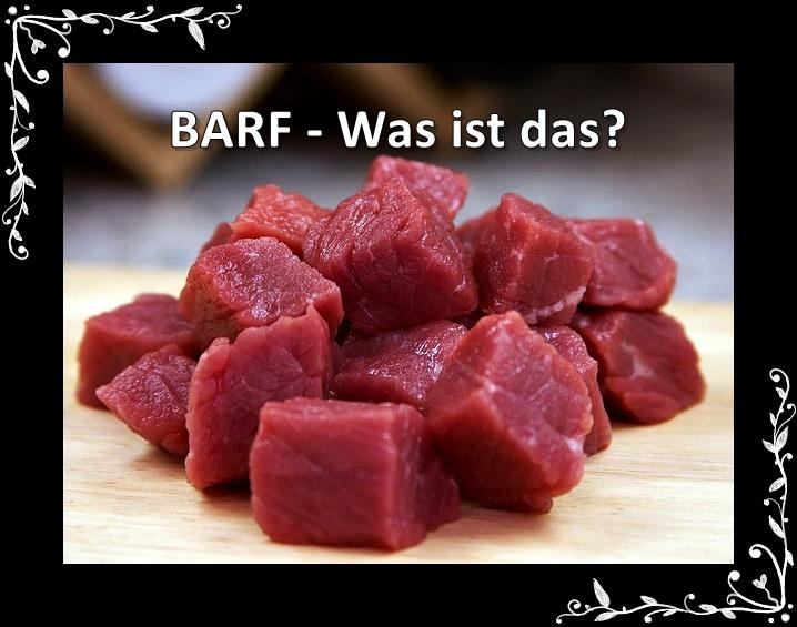 BARF - Was ist das?