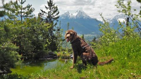 Heimatorte – Eine Reise durch Deutschland und die Welt (Auswertung Blogparade Teil 1)