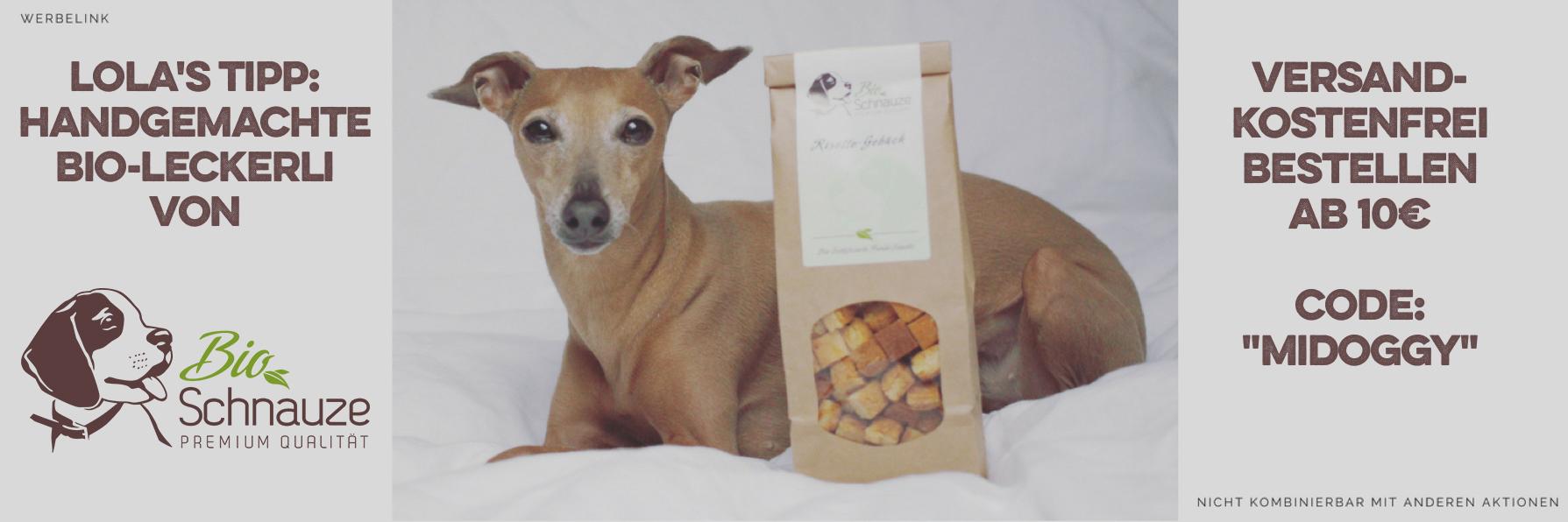 Pfotenpflege Hunde miDoggy