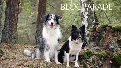 BLOGPARADE – Zeigt her eure Lieblingsorte