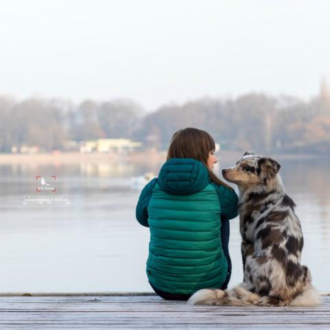 Ähnlichkeit zwischen Mensch und Hund [Teil 2 mit dem Wildfang]