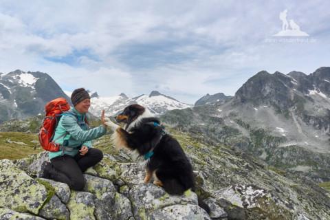 Reisereportage: Wandern mit Hund im Maltatal – Kärnten