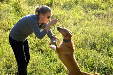 Meine Trainermethoden? Die Bedürfnisse eines Hundes.