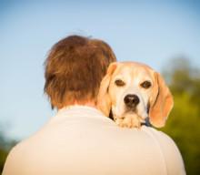 Männer und Hunde