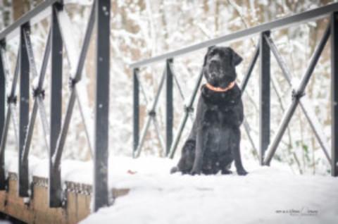 Fotosshooting Winter 2016 Österreich