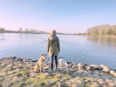 Meine Philosophie Hund – Hundetraining unter der Lupe