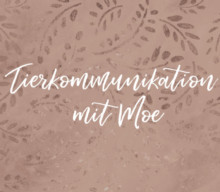 Tierkommunikation mit Moe