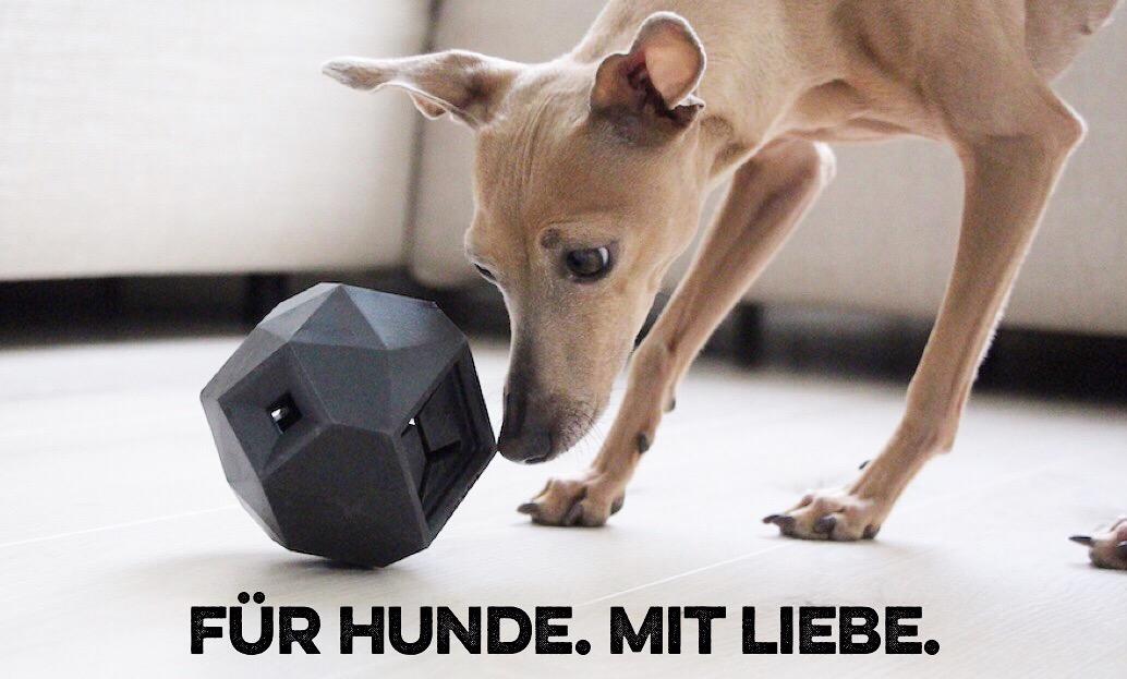 Für Hunde. Mit Liebe. miDoggy Community 2