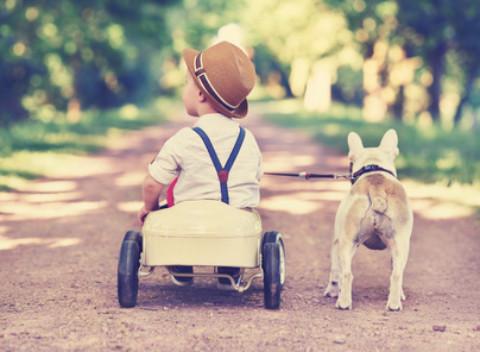 Kind und Hund – was es zu beachten gibt!
