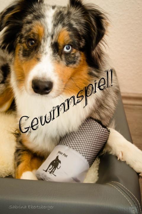 [Sponsored] Produkttest Wet Pet Hundehandtuch + Gewinnspiel!