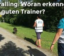 Mantrailing: Woran erkenne ich eigentlich einen guten Trail-Trainer?