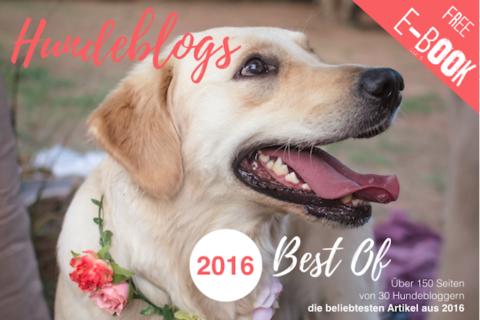 E-Book: Best Of 2016 der deutschen Hundeblogs