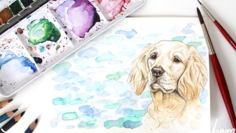 Ein Bild vom eigenen Hund zeichnen lassen – das musst du wissen