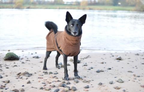 Der Bademantel für den Hund – Das Dryup  Cape im Test