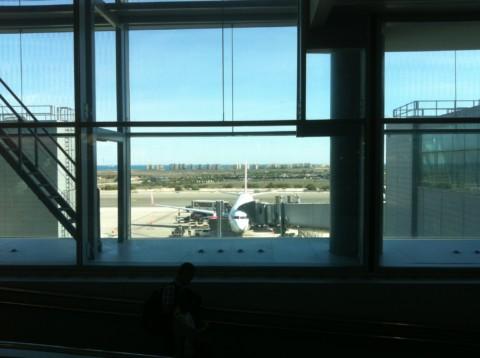 Wir fliegen nach Sri Lanka? Dann biete ich mich doch als Flugpaten an!