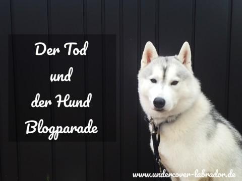 Der Tod und der Hund -Blogparade