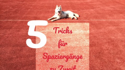 5 Tricks für den Spaziergang zu Zweit
