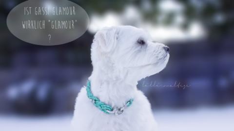 """Ist Gassi Glamour wirklich """"GLAMOUR""""?"""
