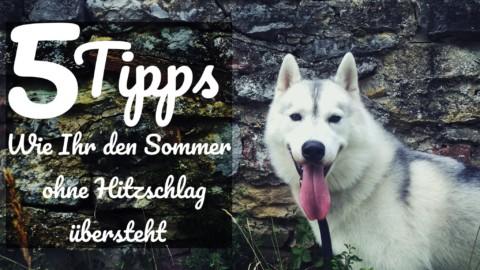 5 Tipps wie Ihr den Sommer ohne Hitzschlag übersteht