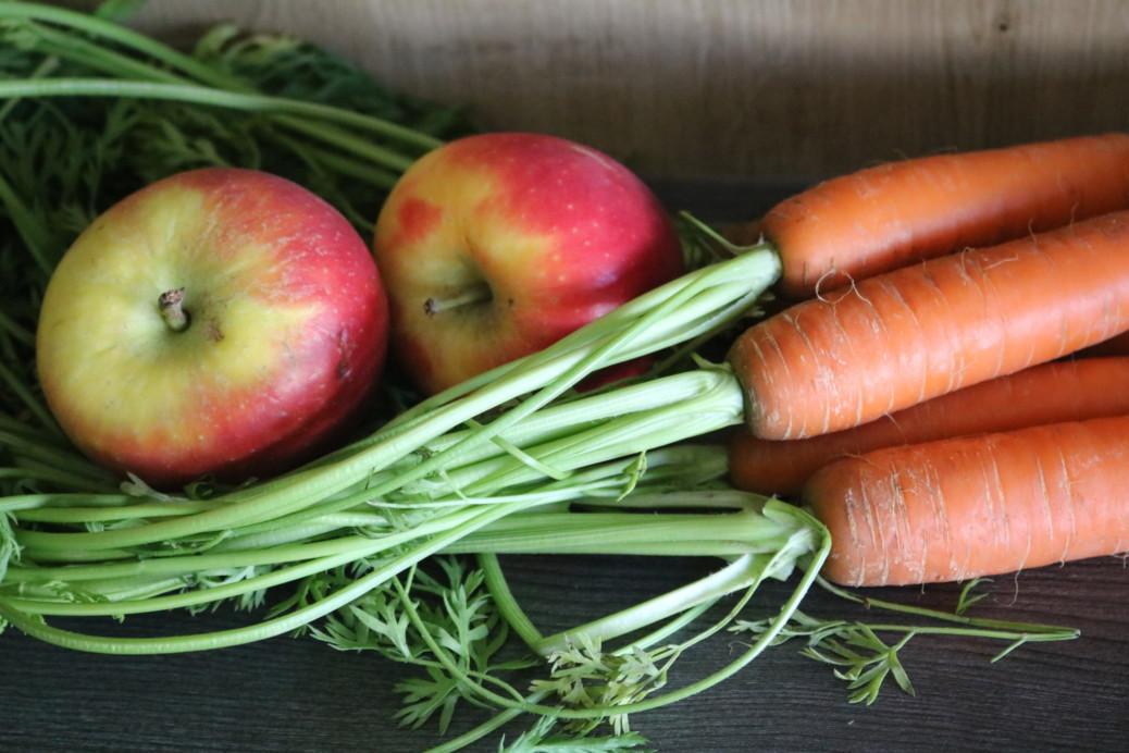 Obst Gemüse Barf vorbereiten