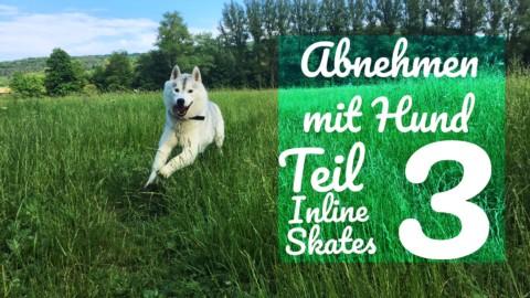Abnehmen mit Hund Teil 3 Inline Skates