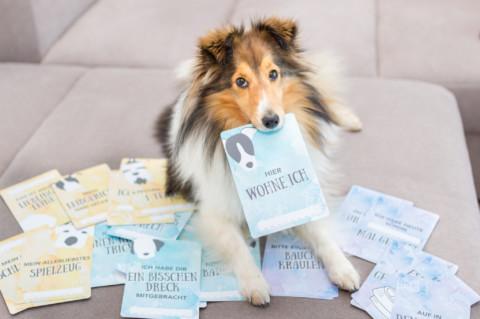Erinnerungskarten jetzt auch für Hundeliebhaber