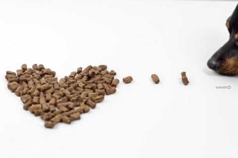 NUTRICANIS | TROCKENFLEISCH MAL ANDERS