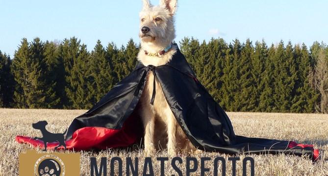 MoPfo-Doktor-Strange