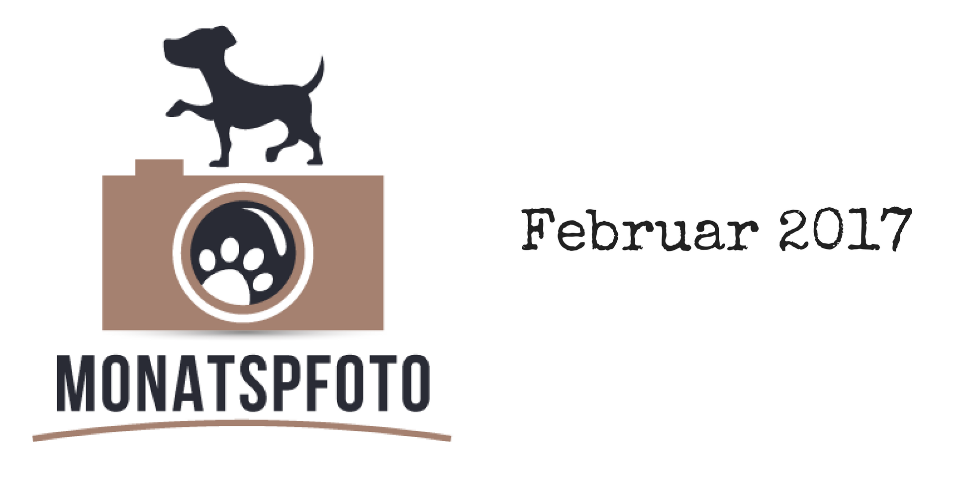 Monatspfoto Februar 2017 miDoggy Blog Community für Hunde