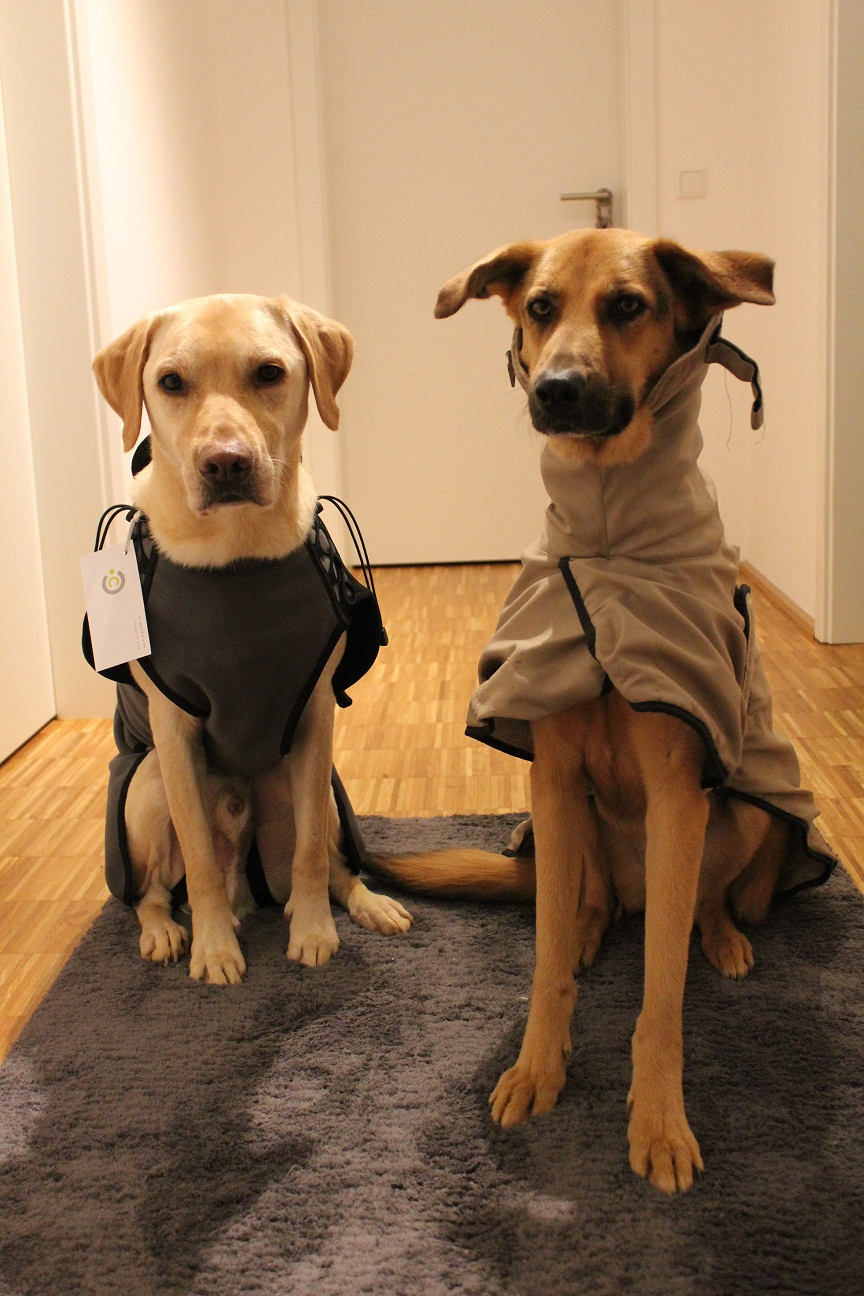 Hundemantel im Test