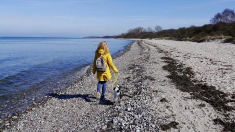 Ostseeglück – (Oster)Wanderung mit Hund