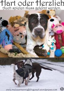 Pinterestbild Hart oder HerzlichSpielweise Kuscheltier Spielzeug Hund Hunde Shar Pei Spielen Blog Hundeblog Ikea Feelilia Bälle Trixie Zoo Kauholz hart herrlich grob sanft